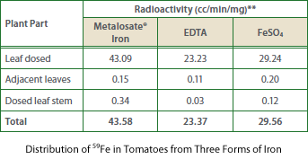 Distribution of 59Fe in Tomatoes from Three Forms of Iron
